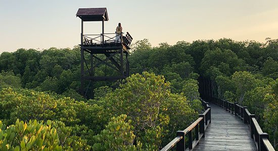 Pranburi National Forest Park